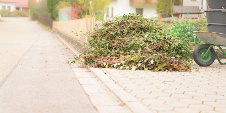 Les déchets verts : Guide complet