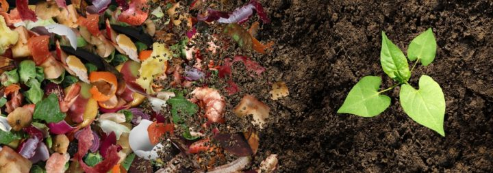 Faire son propre compost